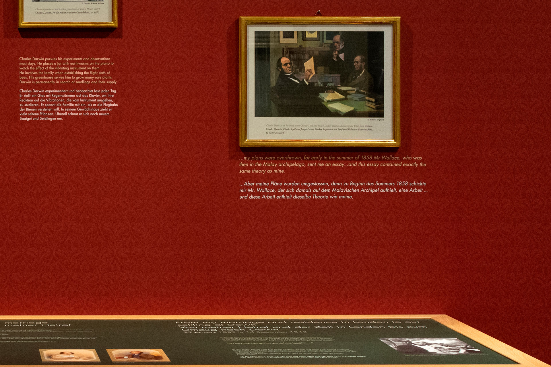 Special Exhibition Charles Darwin The Personal Evolution